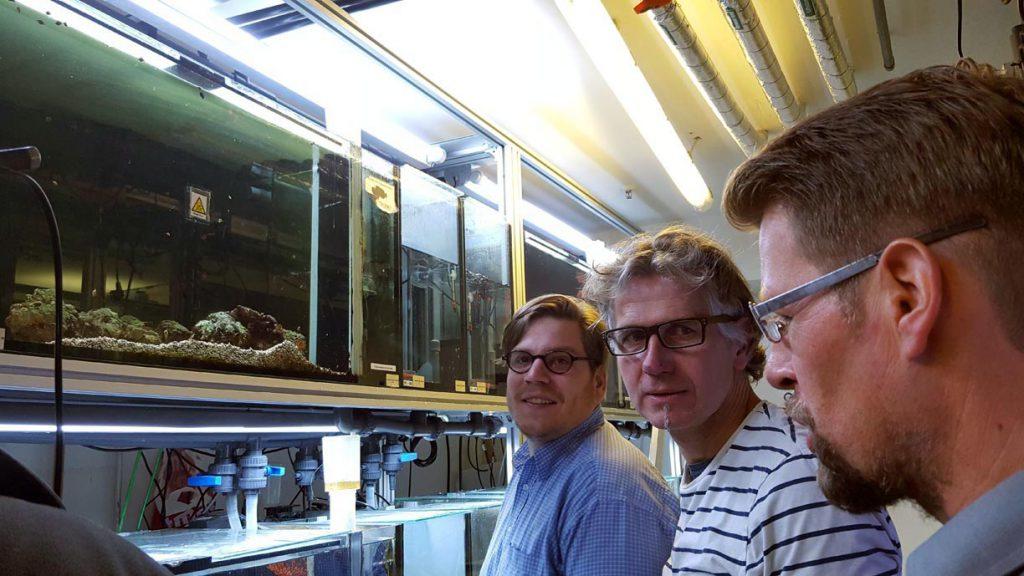 Drei Männer vor einem Aquarium