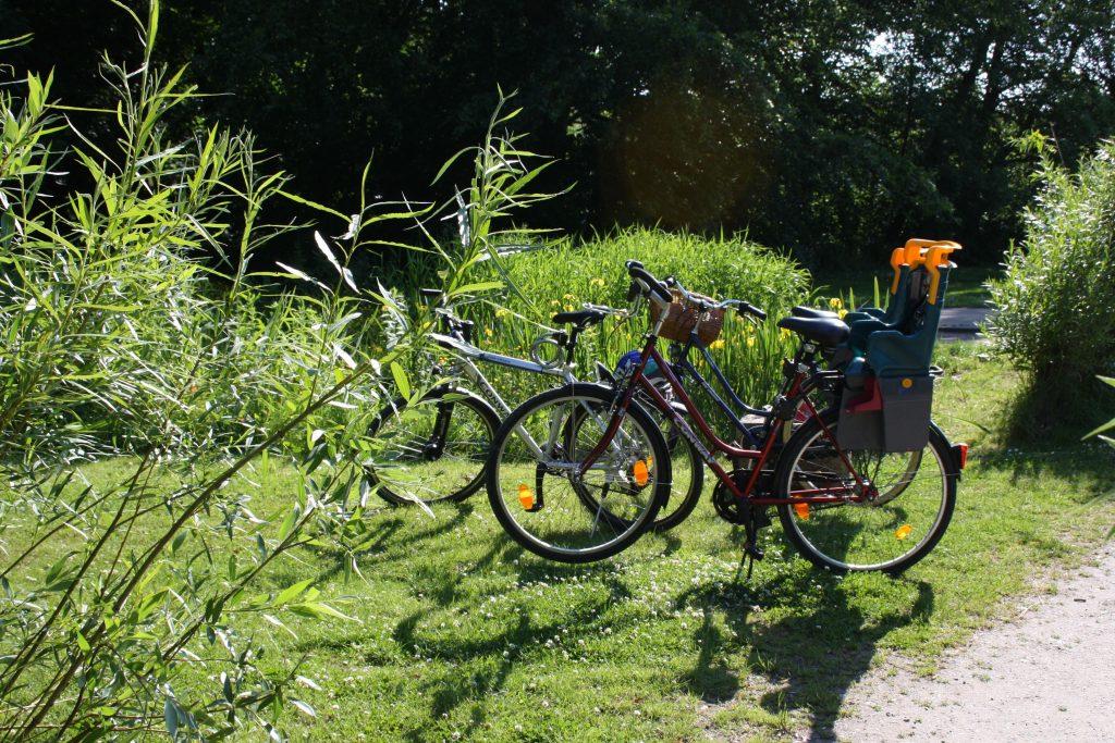 Grünanlage und Parks laden zum Austoben, Radfahren und Verweilen ein (c) Tanja Albert