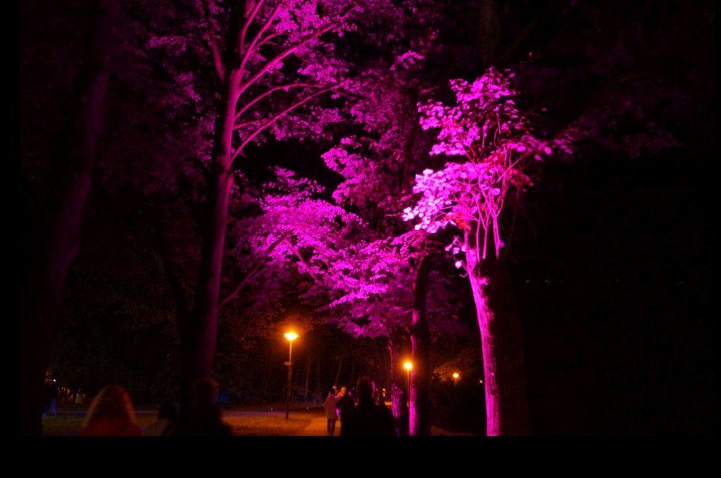 Der Speckenbüttler Park ist in allen Farben beleuchtet (c) Mirja Meyer