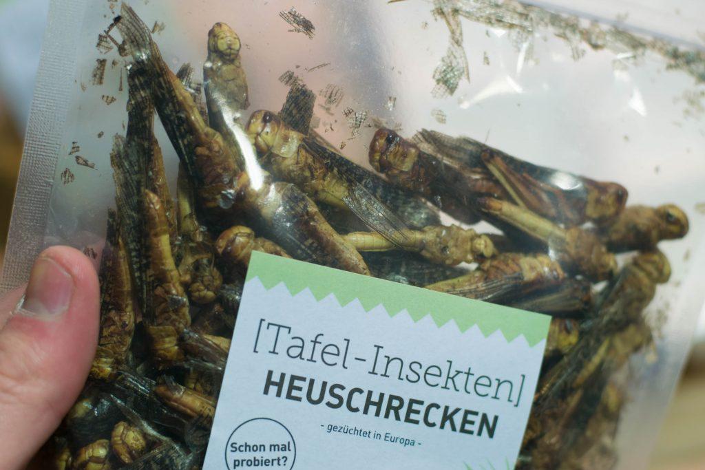 Heuschrecken stehen auf dem Speiseplan im Klimahaus Bremerhaven 8° Ost (Fabian Böttcher @rawrtexx