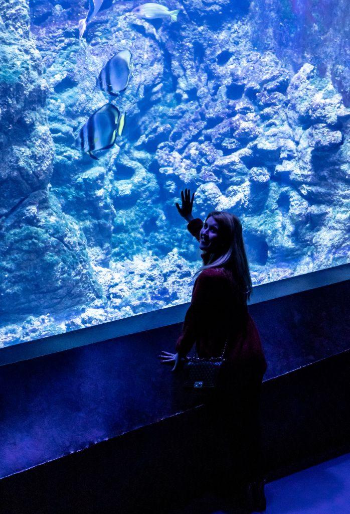 Carina vor der großen Aquariumscheiben im Kliamahaus Bremerhaven 8° Ost (c) Dieter Neuhoff