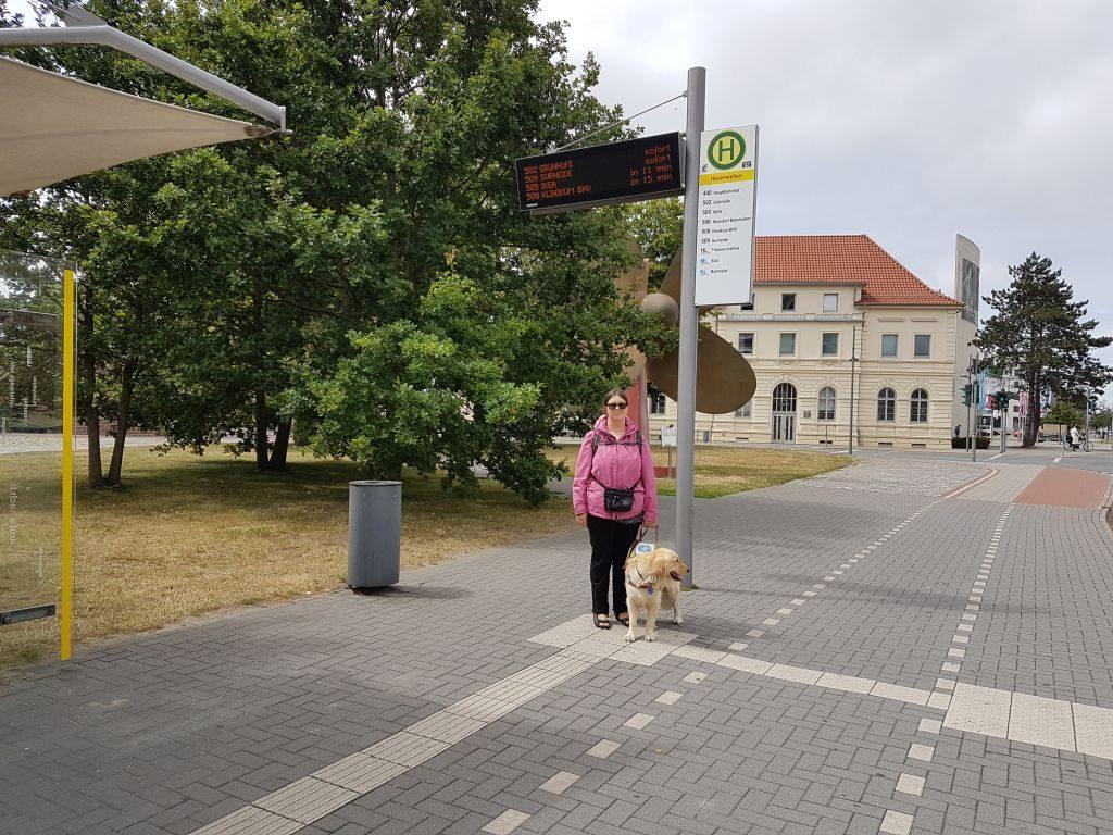 Der Führhund weist ihr den Weg zur Bushaltestelle und zeigt an, wenn dieser kommt. Welche Buslinie es ist, muss Maleike aber beim Fahrer erfragen (c) Tanja Albert