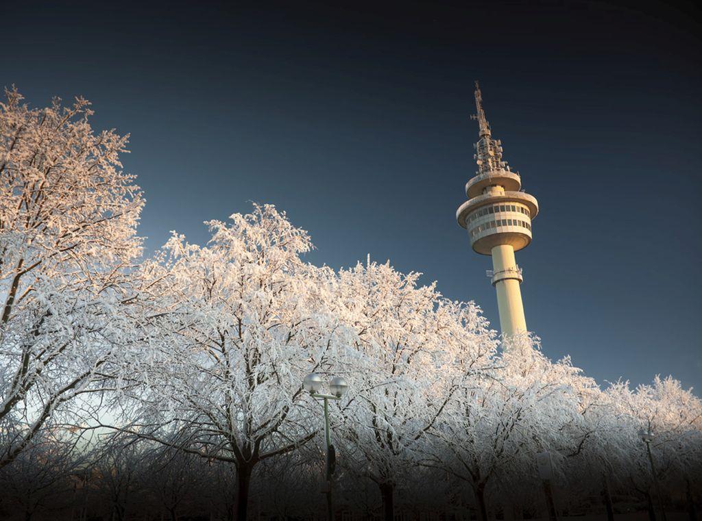 Blick über mit Rauhreif bedeckte Bäume auf den Radarturm in Bremerhaven (c) Ohlthaver
