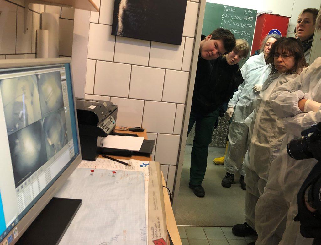 Die Tierpfleger schauen auf die Überwachungskamera