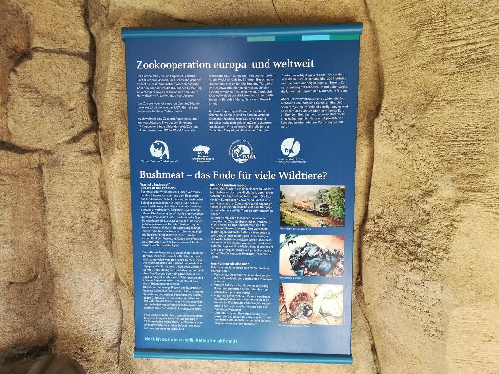 Bildungsarbeit im Zoo am Meer