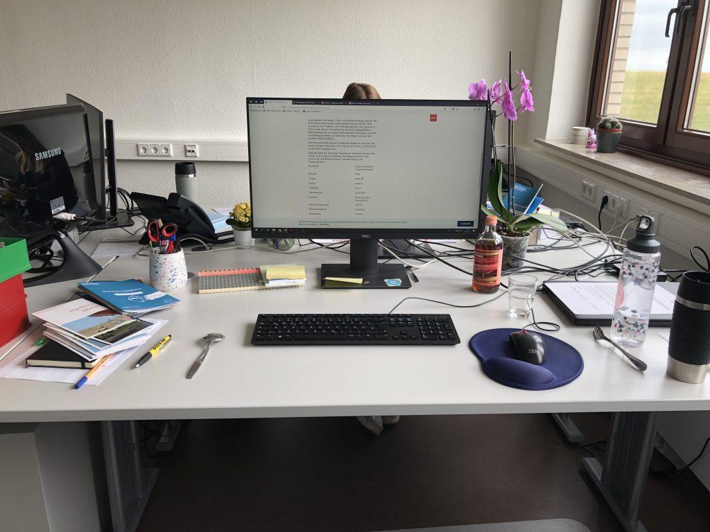 Mein Arbeitsplatz: großzügiger Schreibtisch mit eigenem Rechner.