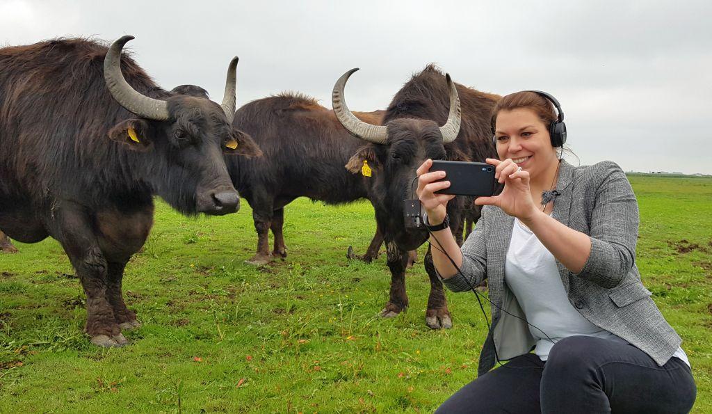 Frau macht Selfie mit Kuh