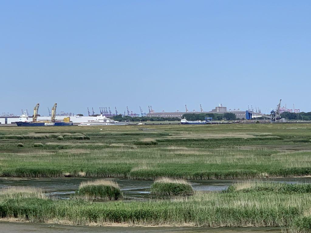 Blick über Luneplate auf Skyline Bremerhaven