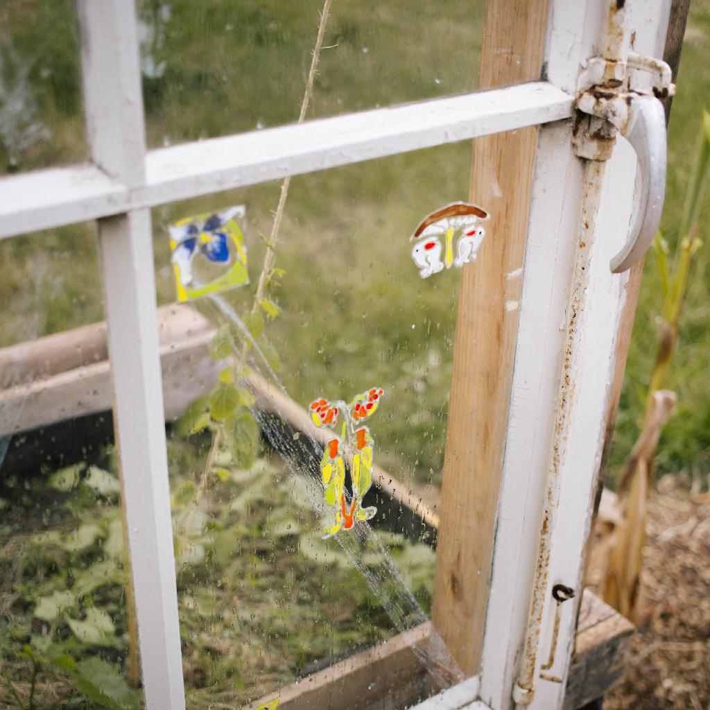 Nachhaltigkeit steht ganz oben - ein Blick ins Beet durch alte Scheiben. (c) M. Alber