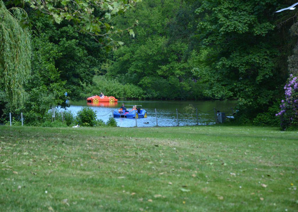 Zwei Tretboote auf dem Bürgerpark-Teich in Bremerhaven (c) Andreas Larmann