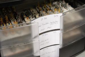 Kleinstmodelle werden fein säuberlich in Schubladen gelagert. Jede Schublade ist entsprechend beschriftet.