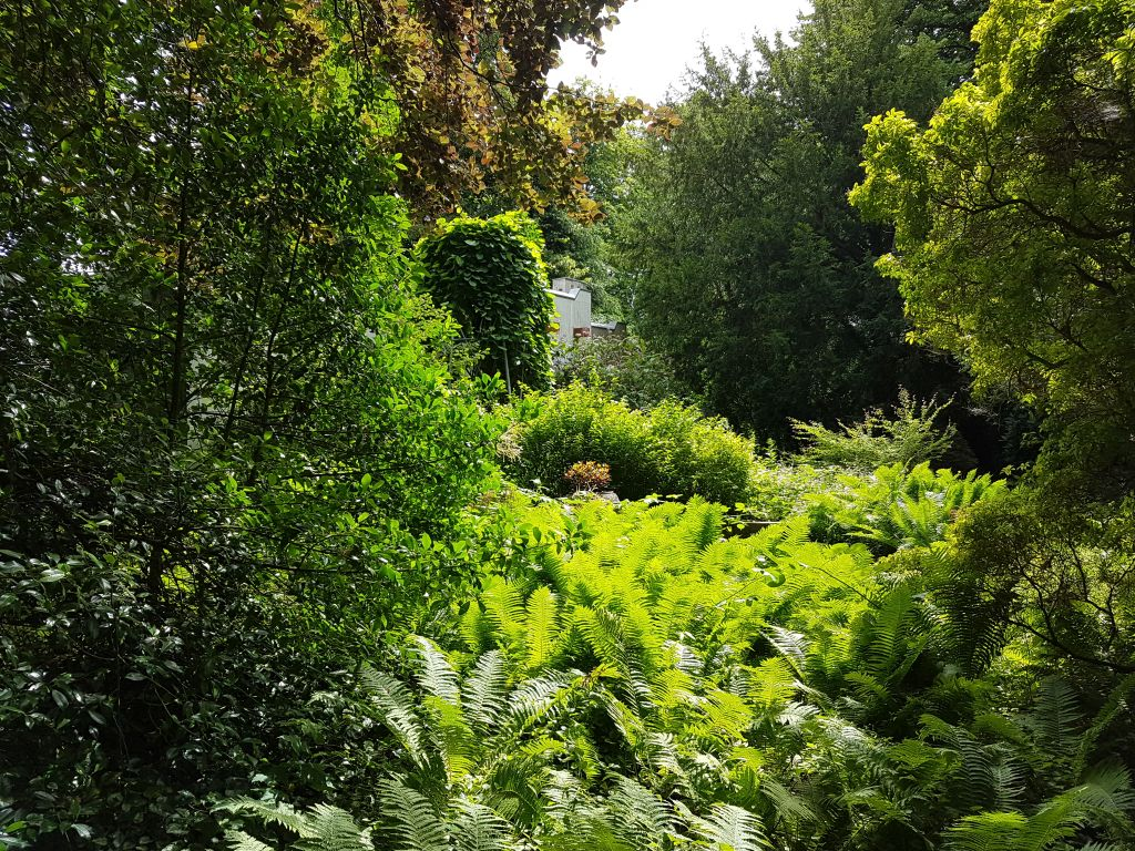 Thieles Garten (c) Tanja Albert