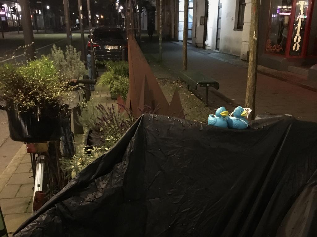 Verteilte Badeenten in der Alten Bürger bei Nacht