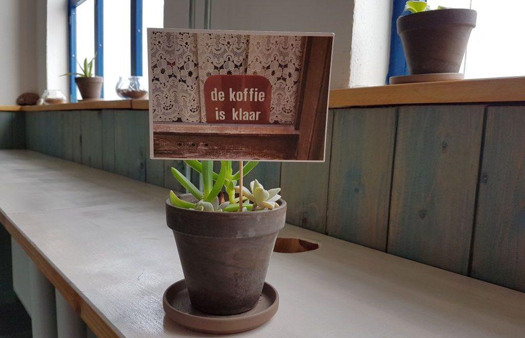 Blumentopf mit Postkarte darin (c) Tanja Albert