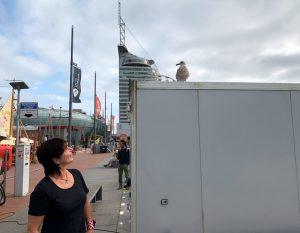 Tanja blickt zu einer Möwe hoch, die auf einem Container sitzt (c) Lini Selimi
