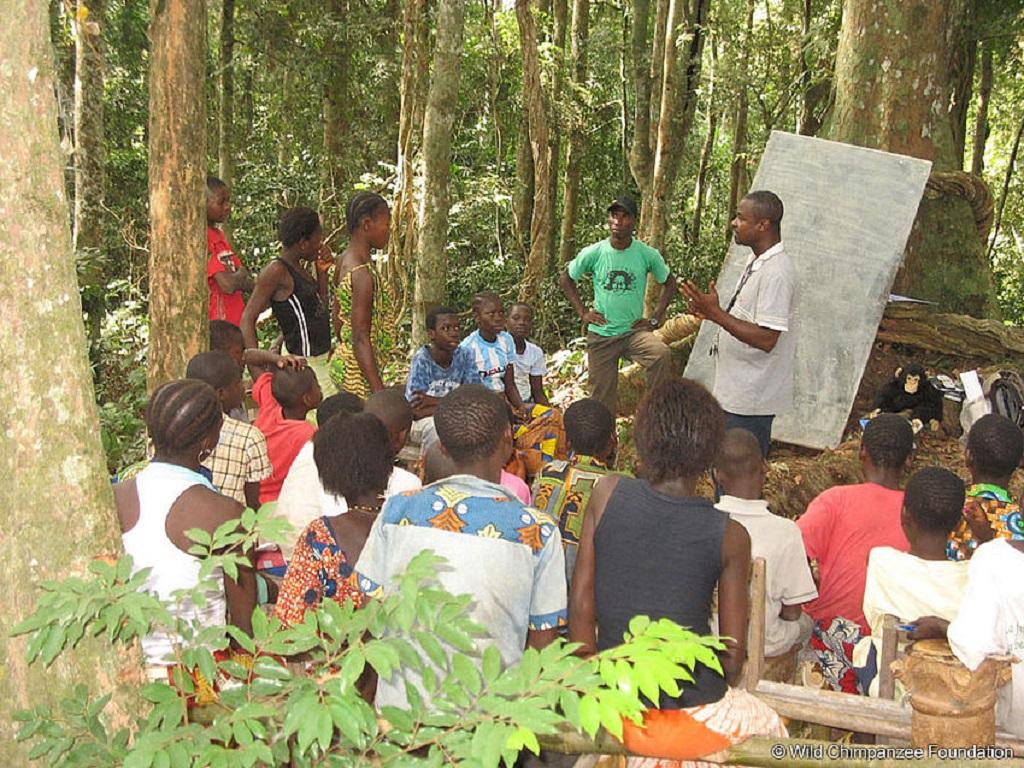 Bildungsarbeit der Wild Chimpanzee Foundation
