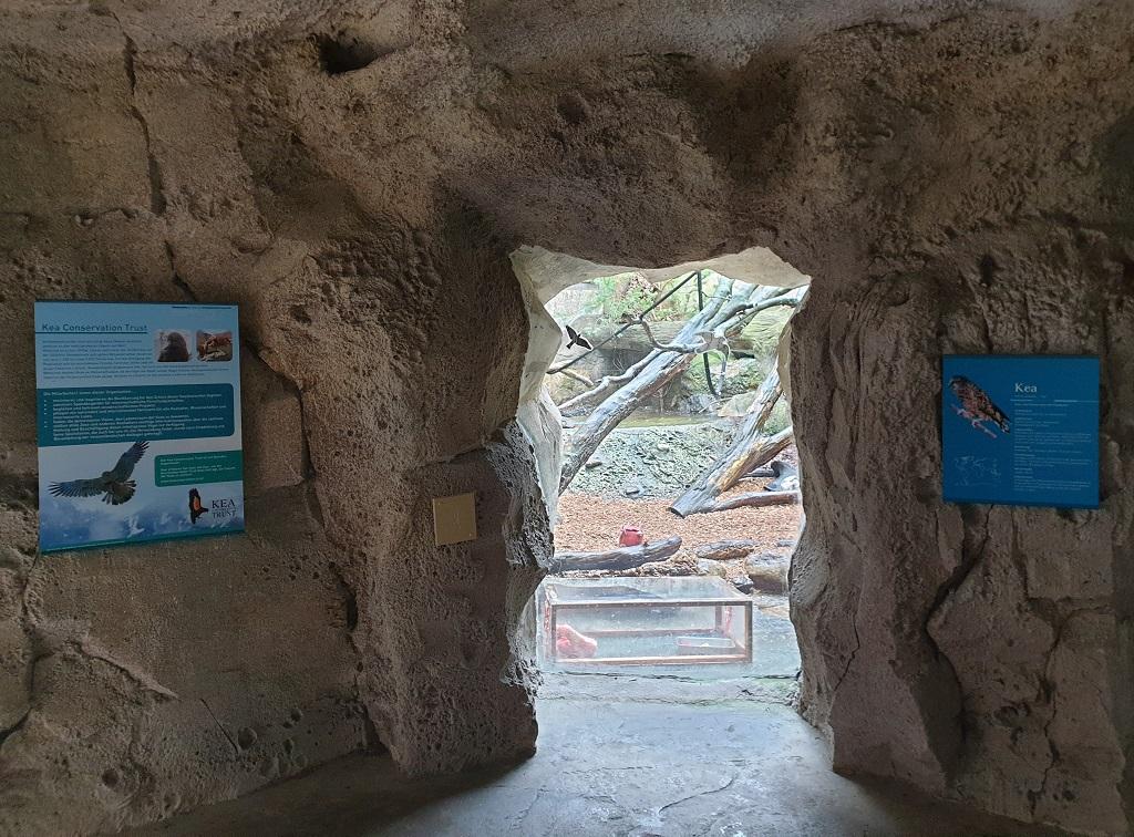 Infoschild Kea Conservation Trust