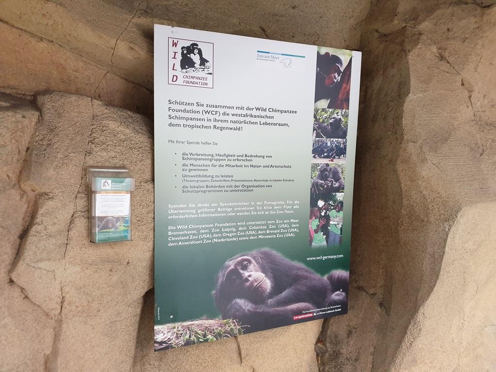 Infoschild Wild Chimpanzee Foundation
