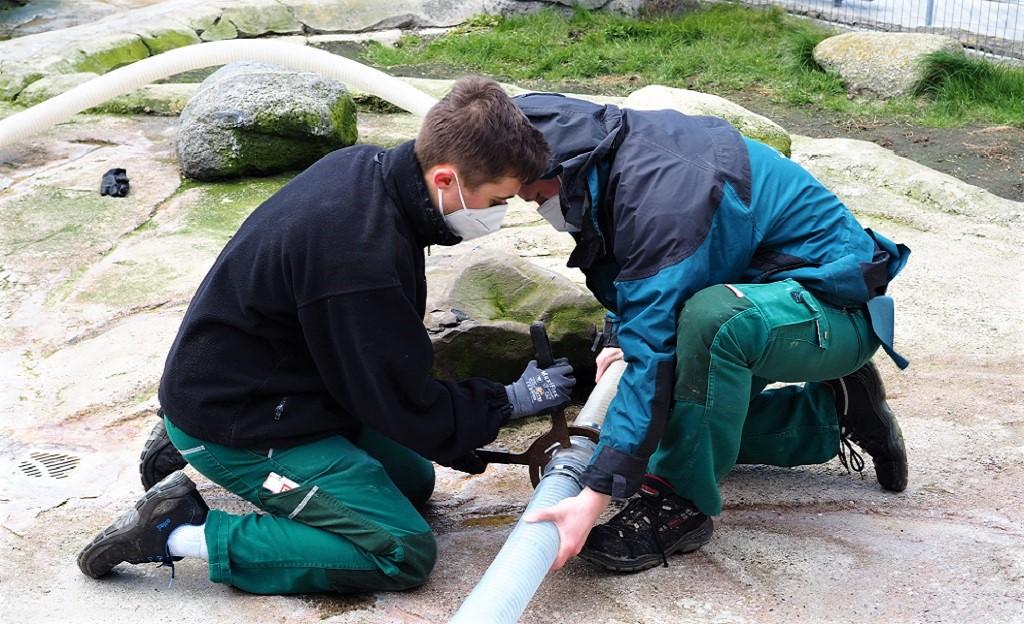 Dicke Wasserschläuche werden verlegt
